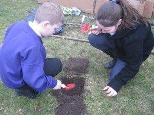 Tree planting 001