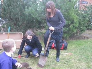 Tree planting 008