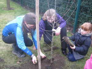 Tree planting 022